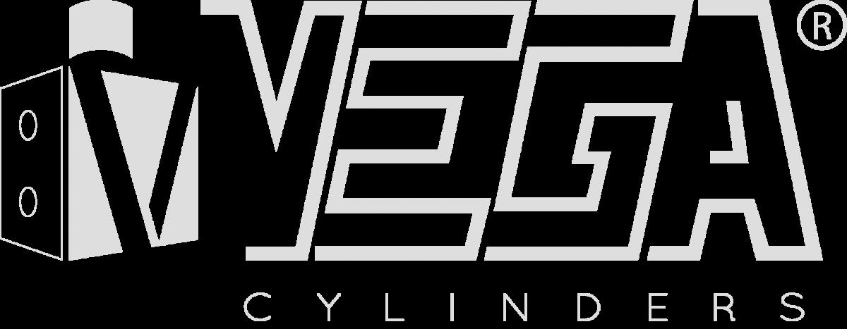 logo-vega-silver